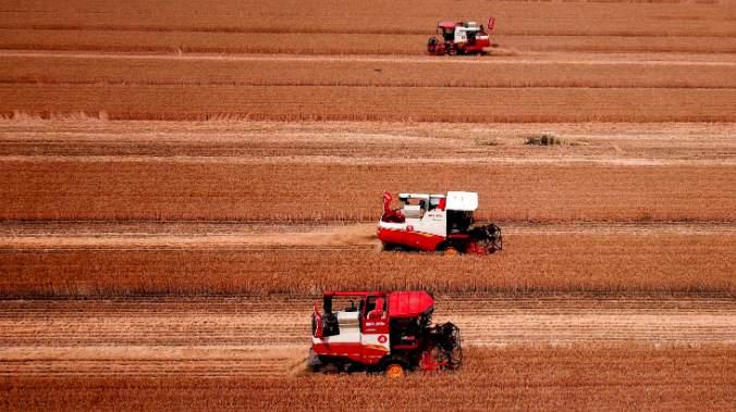 """让投保农户""""旱涝保收""""!三大粮食作物农业保险政策扩面提标 逐步覆盖13个粮食主产省份所有产粮大县"""