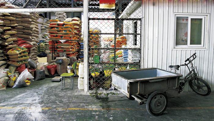 一家五常米业公司仓库里堆放的五常大米 。 视觉中国图