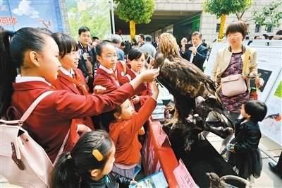 陕西小学生发出爱护候鸟倡议书