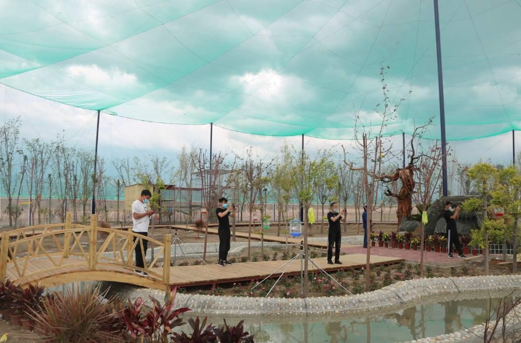 鸟鸣心愉悦,来看新疆布克赛尔县百鸟园
