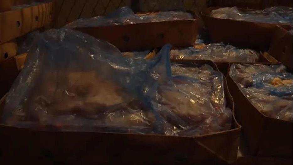 南宁查获超10吨可疑冻品,含南北美洲鸡翅鸡爪