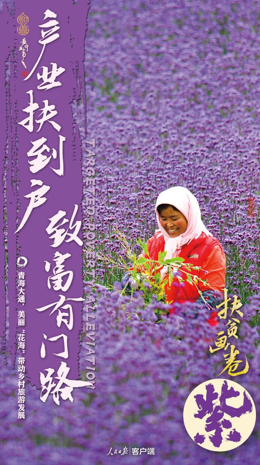 紫色.jpg?x-oss-process=style/w10
