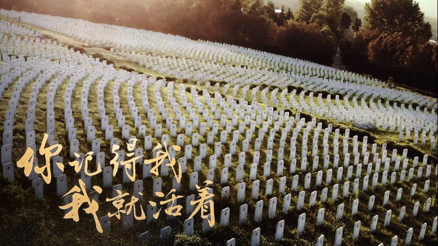 邓州市桑庄镇:烈士亭前传扬红色故事