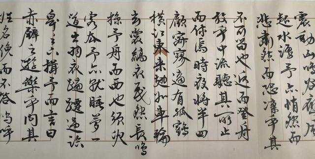 柳荫《行书苏轼前后赤壁赋》局部