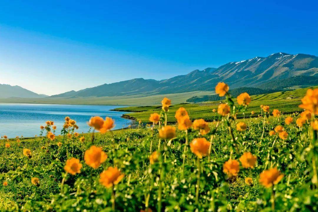 太阳|136亿亿吨的水浇到太阳上,太阳会怎样?